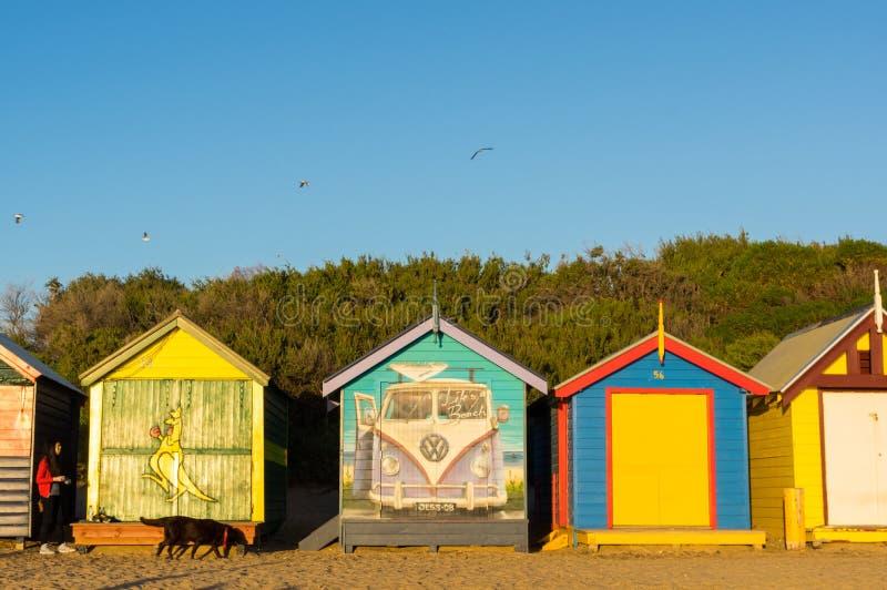 五颜六色的沐浴的箱子在布赖顿在墨尔本,澳大利亚靠岸 图库摄影