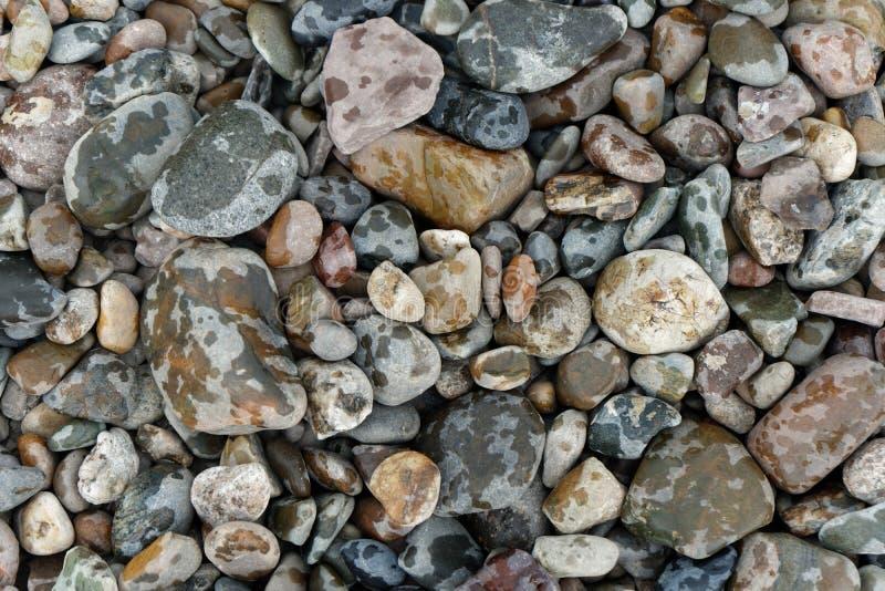 五颜六色的河石头在雨中 库存照片