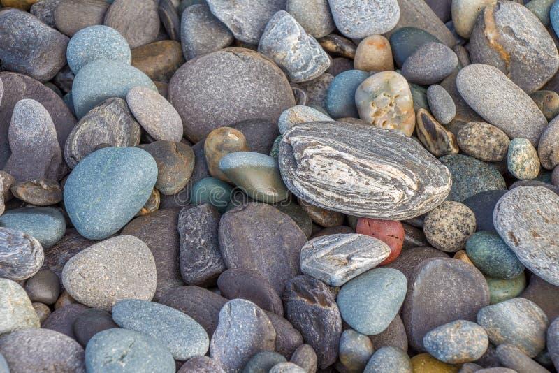 五颜六色的海滩岩石 免版税库存照片