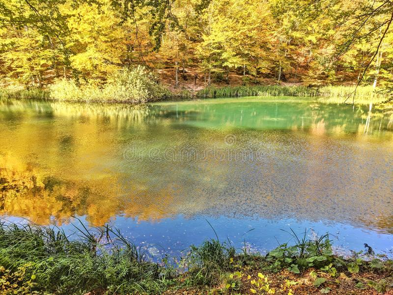 五颜六色的湖包围与秋天自然色的树  免版税图库摄影