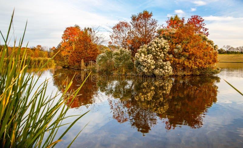 五颜六色的湖海岛 库存照片