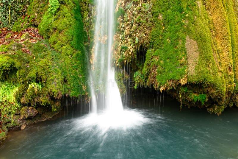 五颜六色的瀑布在与叶子的森林早期的秋天 免版税库存照片