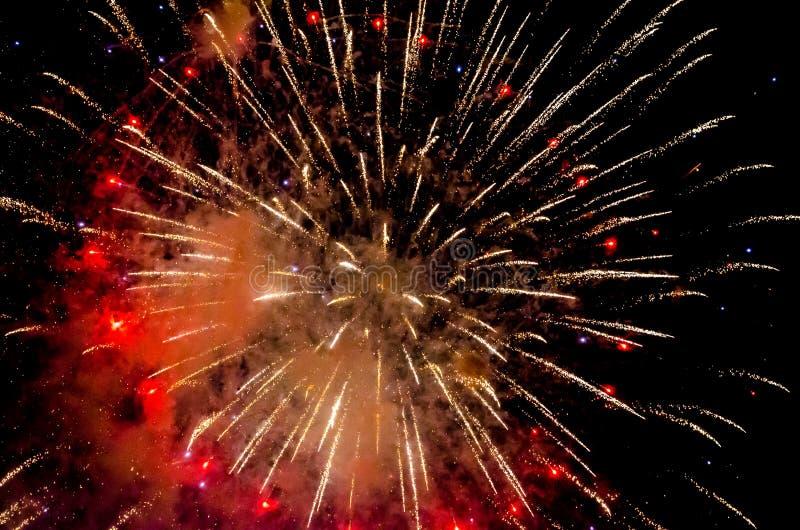 五颜六色的烟花假日闪光在黑夜空的 免版税库存图片