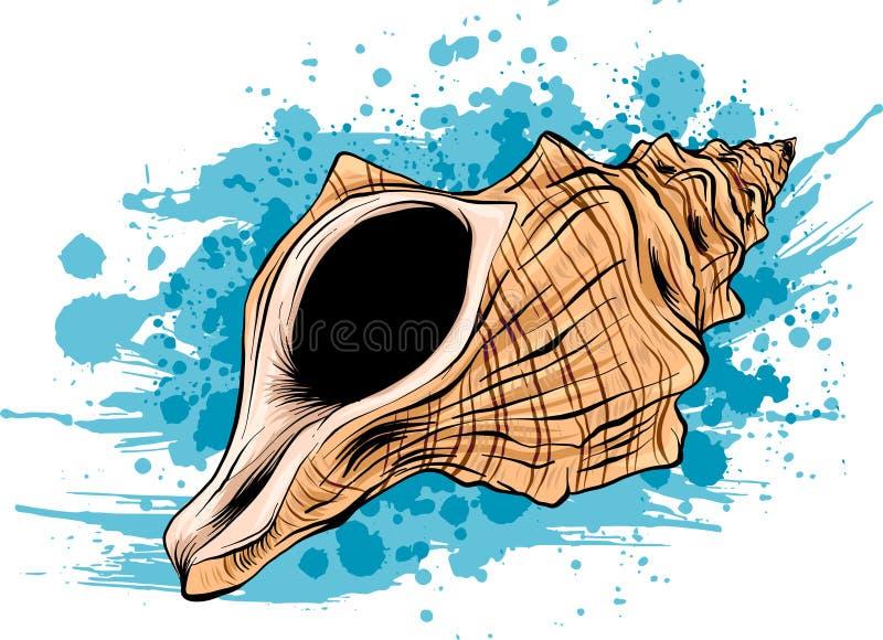 五颜六色的热带海壳壳水下的象集合框架,传染媒介例证 与壳和海的夏天概念 库存例证