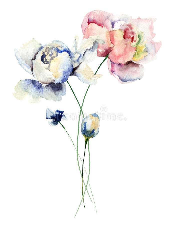 五颜六色的牡丹花 向量例证
