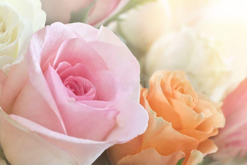 五颜六色的玫瑰花束 免版税图库摄影