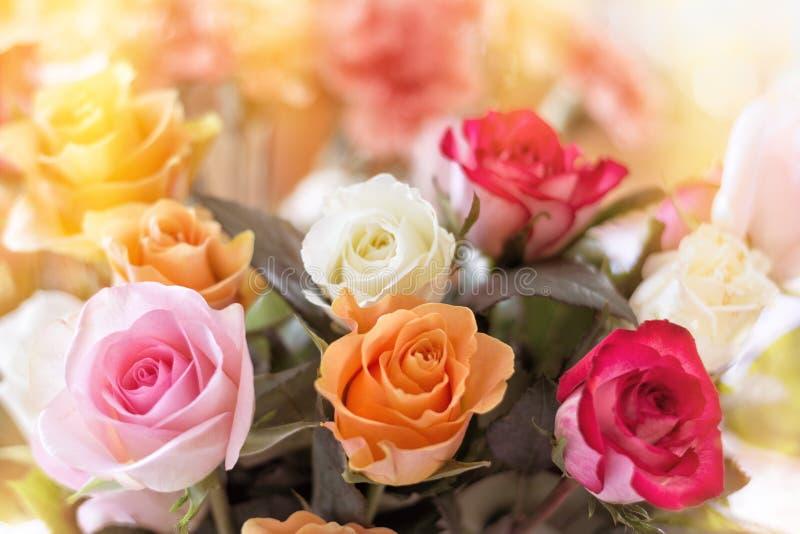 五颜六色的玫瑰花束 库存照片