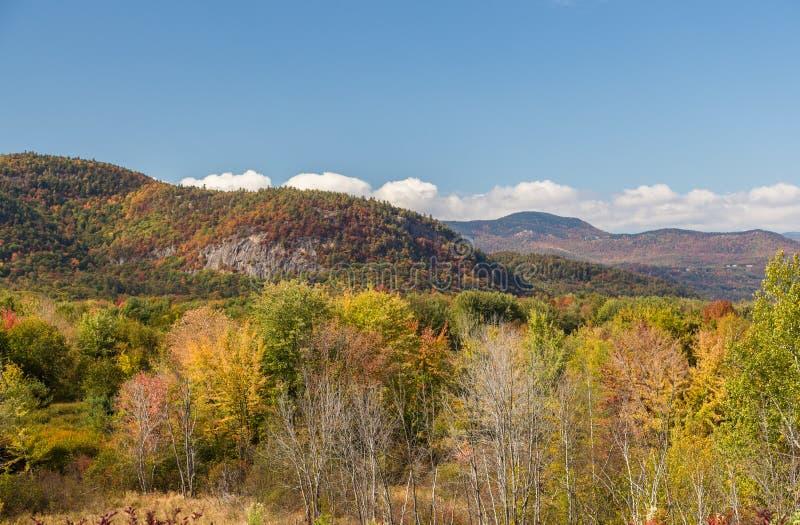 五颜六色的白色山国家森林在秋天,新的Hampshir 免版税库存图片