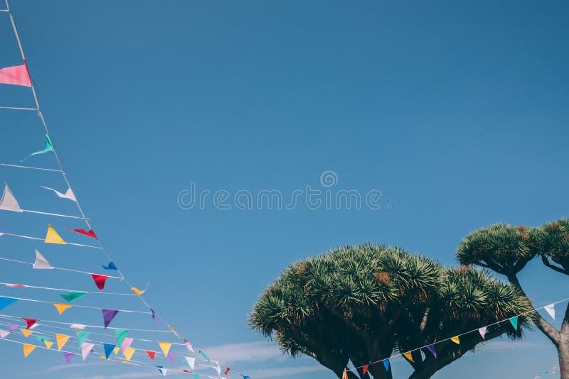 五颜六色的短打的旗子被栓对在天空蔚蓝的一个龙血树在背景,西班牙 免版税库存照片