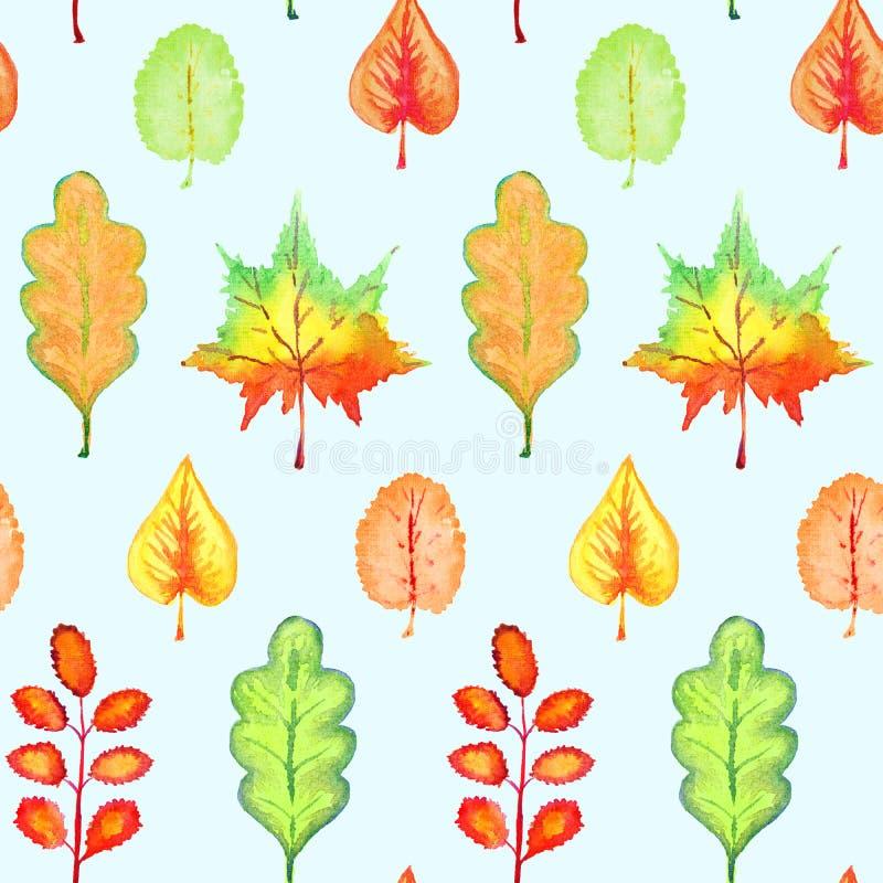 五颜六色的秋叶品种不同的形状,手画水彩例证,在蓝色的无缝的样式 库存例证