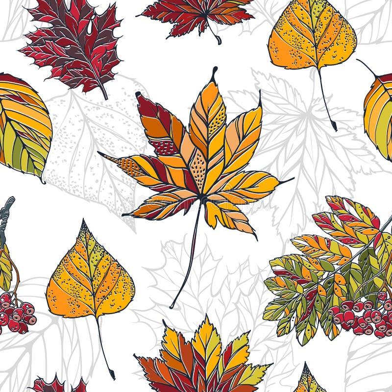 五颜六色的秋叶的秋叶无缝的样式的无缝的样式与槭树,花揪,桦树的 皇族释放例证