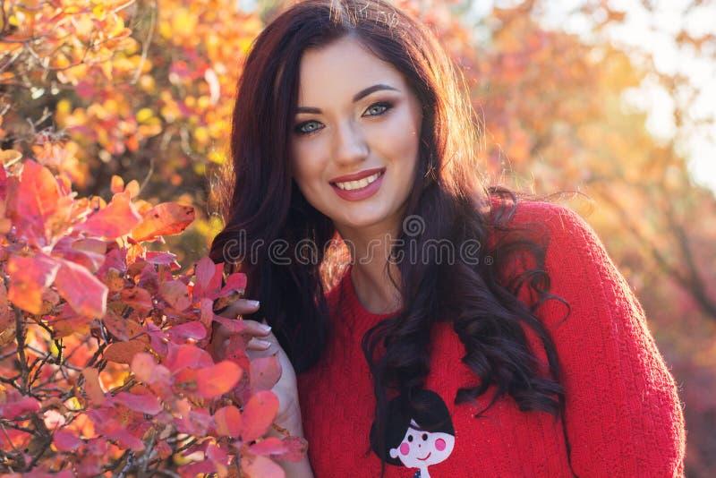 五颜六色的秋叶的美丽的微笑的女孩 库存图片