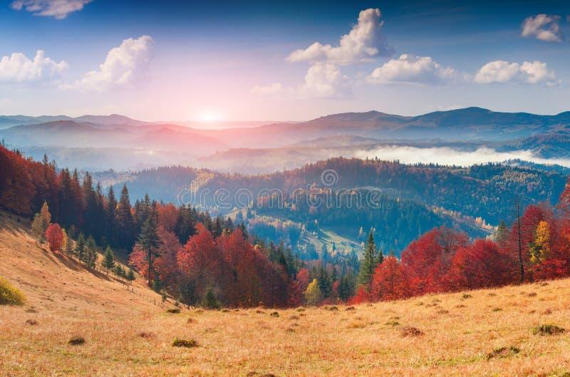 五颜六色的秋天全景在山村 有雾的早晨 免版税库存照片