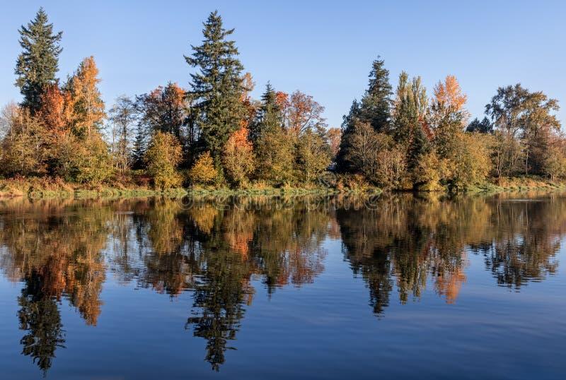 五颜六色的秋天反射在水中 免版税库存照片