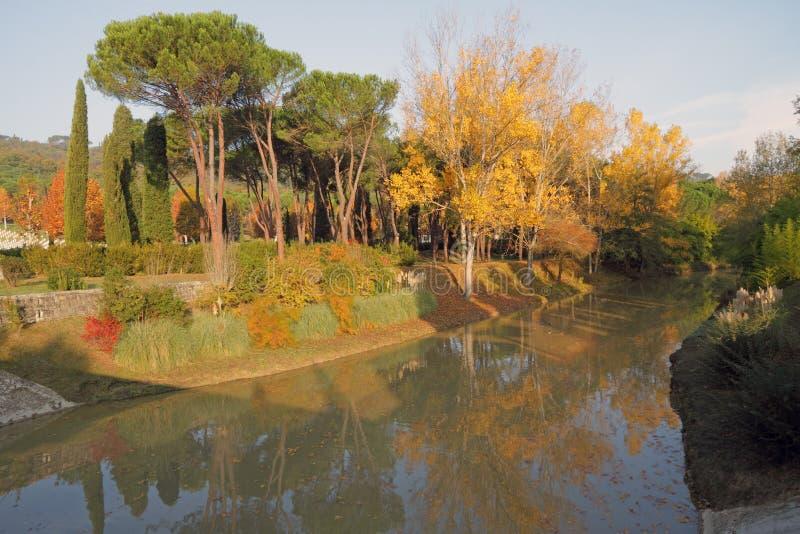 五颜六色的秋天反映河结构树 免版税库存照片