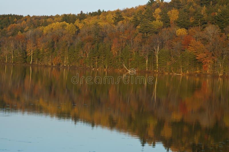 五颜六色的秋天树在Maine湖反射了 库存照片