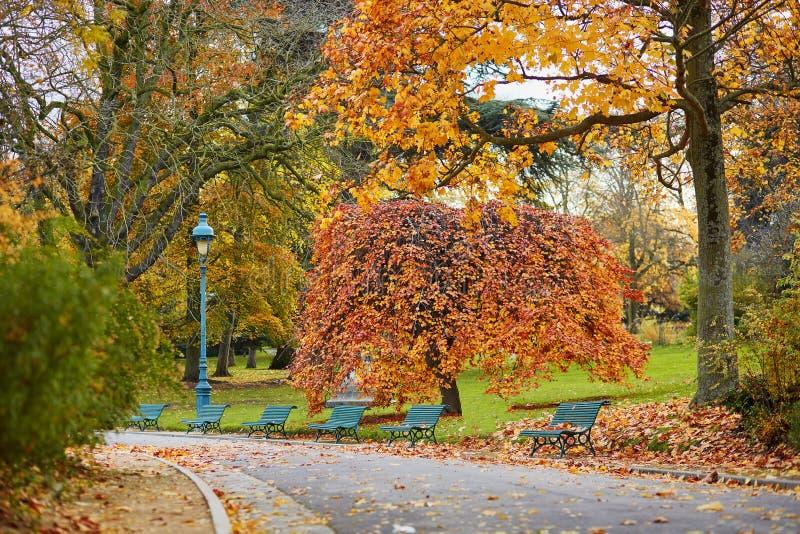 五颜六色的秋天树在Montsouris停放,巴黎, 库存照片
