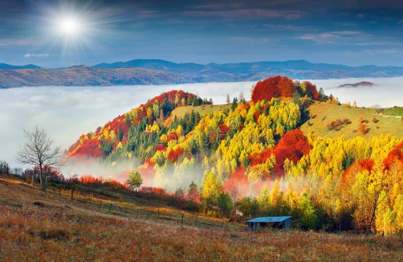 五颜六色的秋天风景在山村 有雾的早晨 免版税库存图片