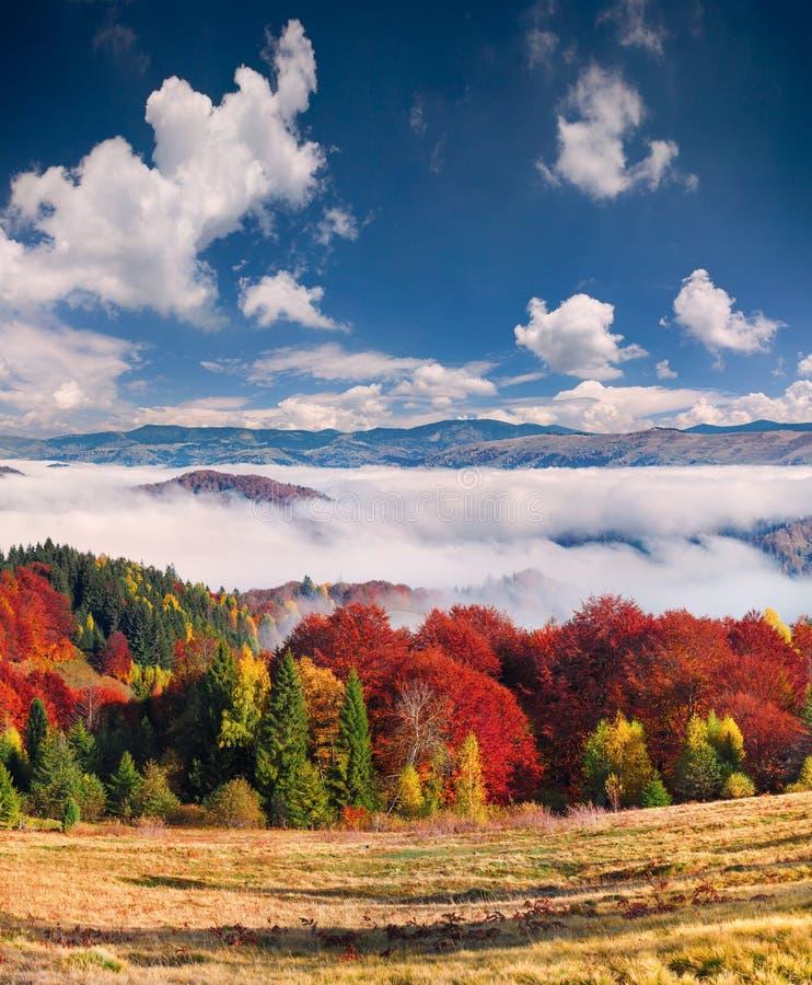 五颜六色的秋天风景在山村 有雾的早晨 免版税库存照片