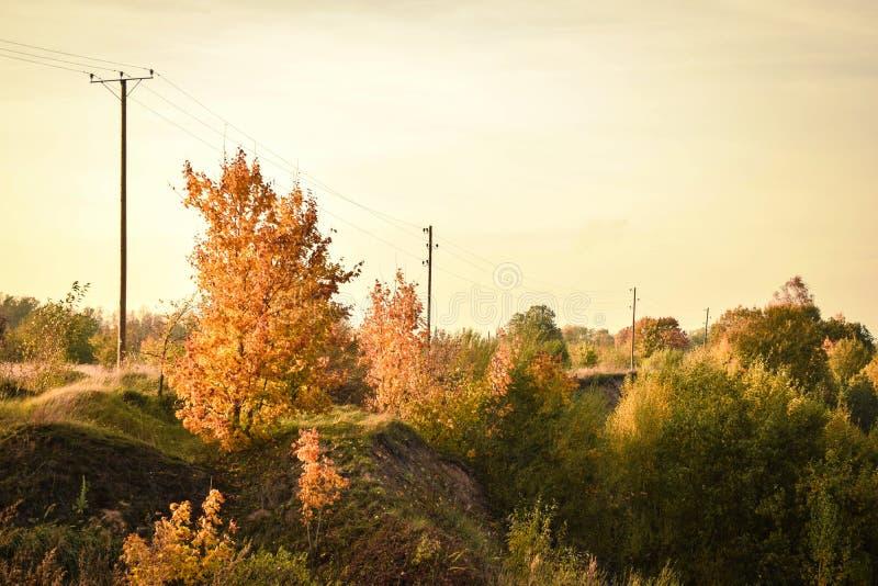 五颜六色的秋天风景在晴天 免版税库存图片