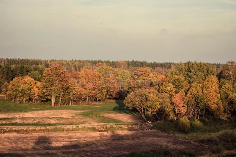 五颜六色的秋天风景在晴天 免版税图库摄影