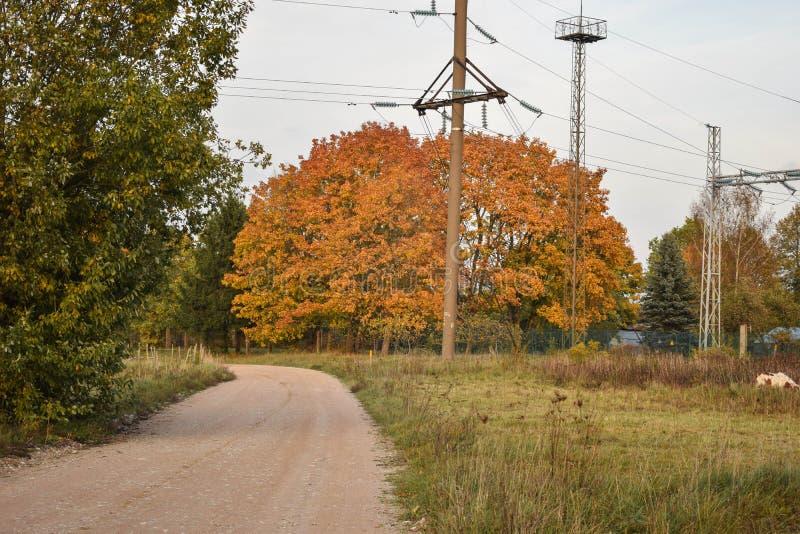 五颜六色的秋天风景在晴天 图库摄影