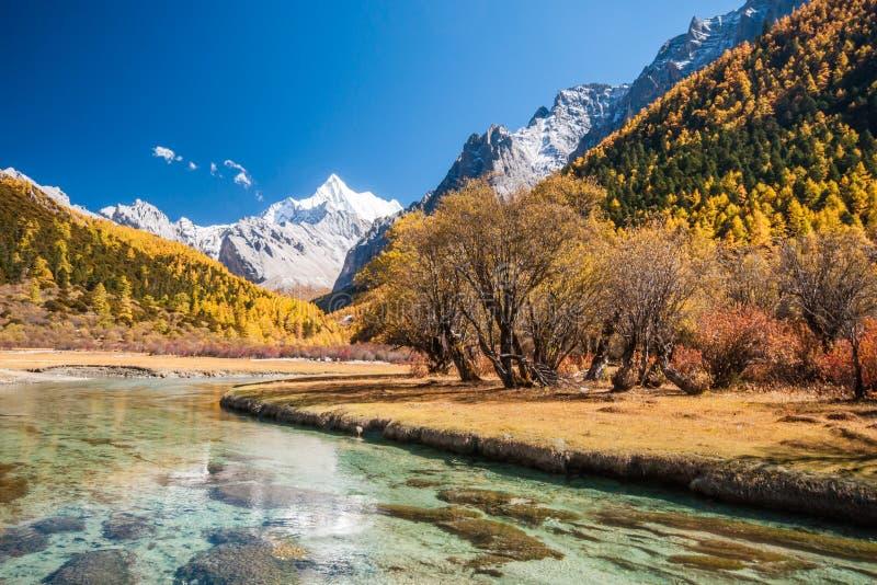 五颜六色的秋天 免版税图库摄影