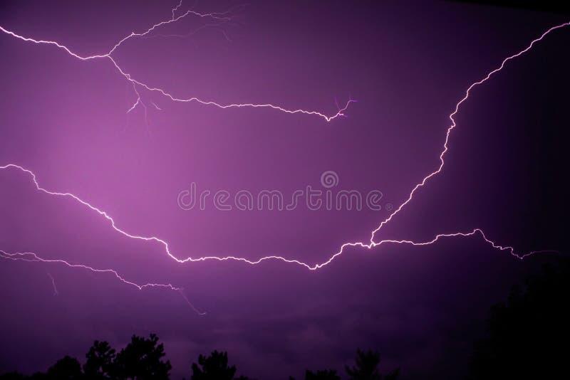 五颜六色的紫色桃红色闪电 免版税库存图片