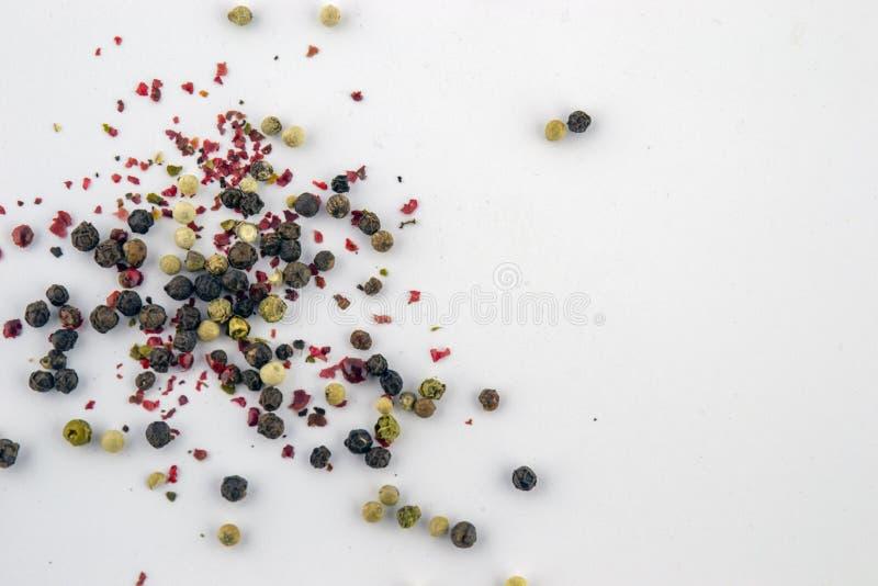 五颜六色的胡椒在白色背景 库存照片