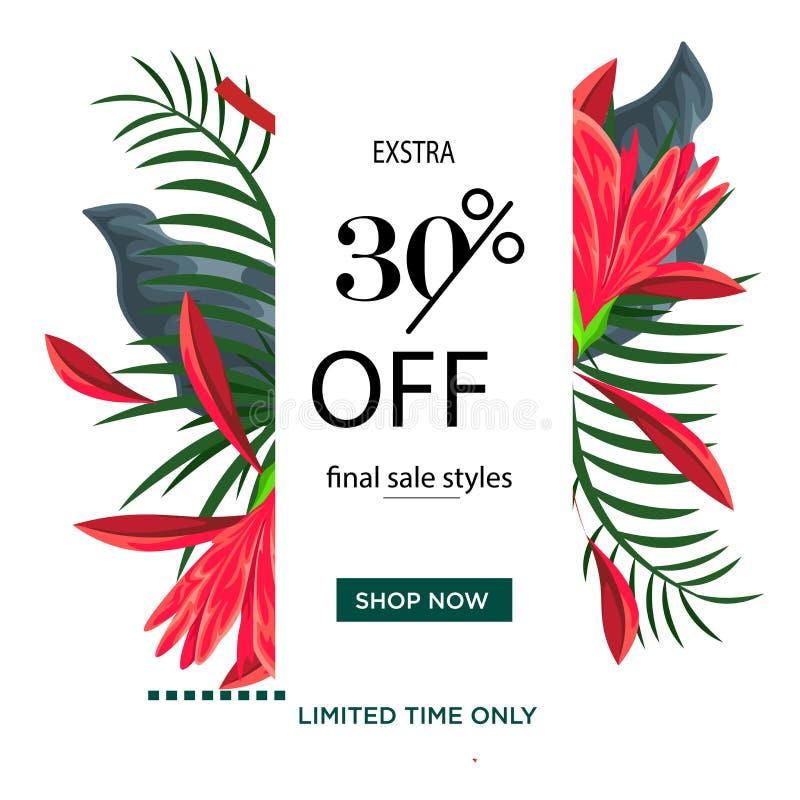 五颜六色的花卉时间有限夏天销售横幅模板设计 30%折扣大销售特价 绿色红色叶子 ?? 皇族释放例证