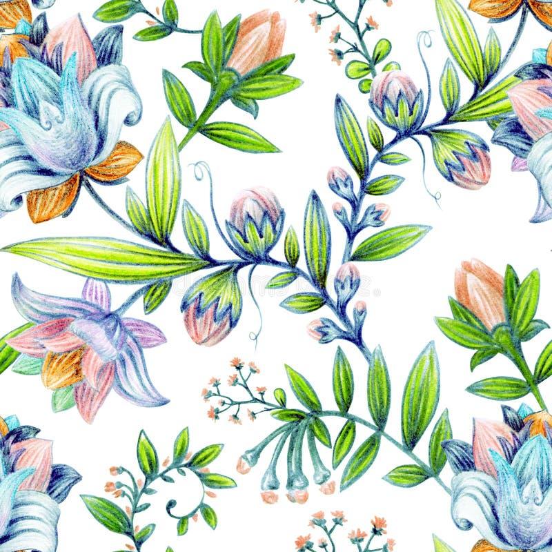五颜六色的花卉模式 明亮的花墙纸 皇族释放例证