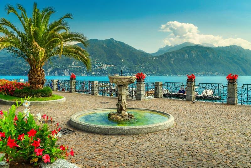 五颜六色的花和壮观的散步,科莫湖,伦巴第地区,意大利 免版税库存照片