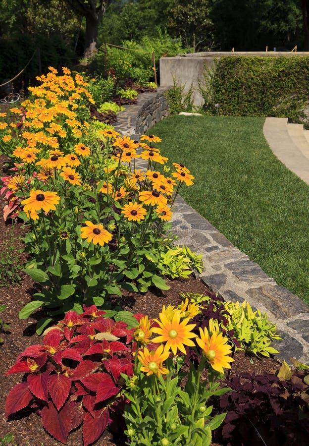 五颜六色的花床在夏天公园 免版税库存图片