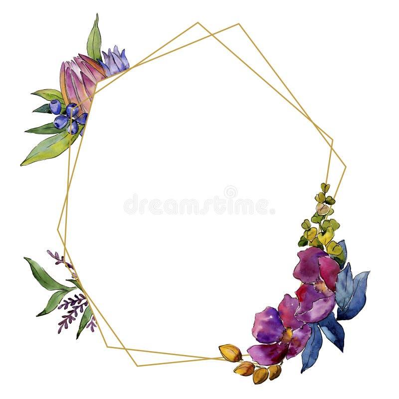 五颜六色的花束热带花 花卉植物的花 框架边界装饰品正方形 向量例证