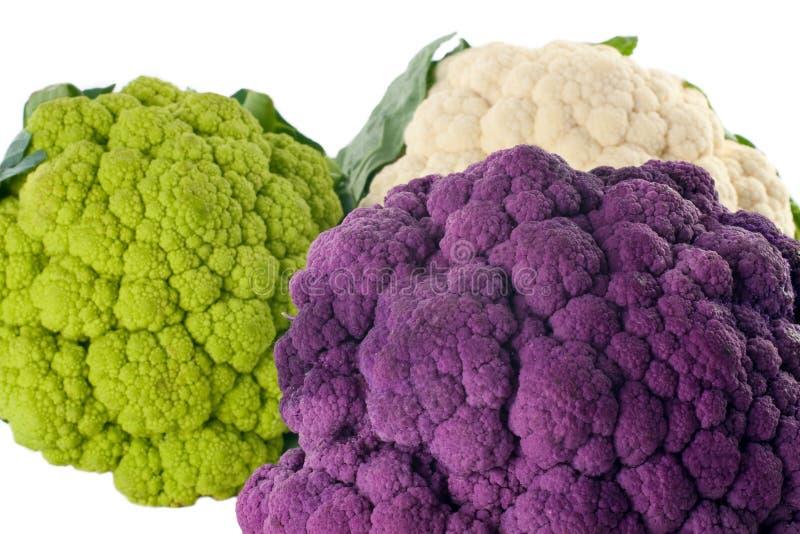 五颜六色的花椰菜 免版税库存照片
