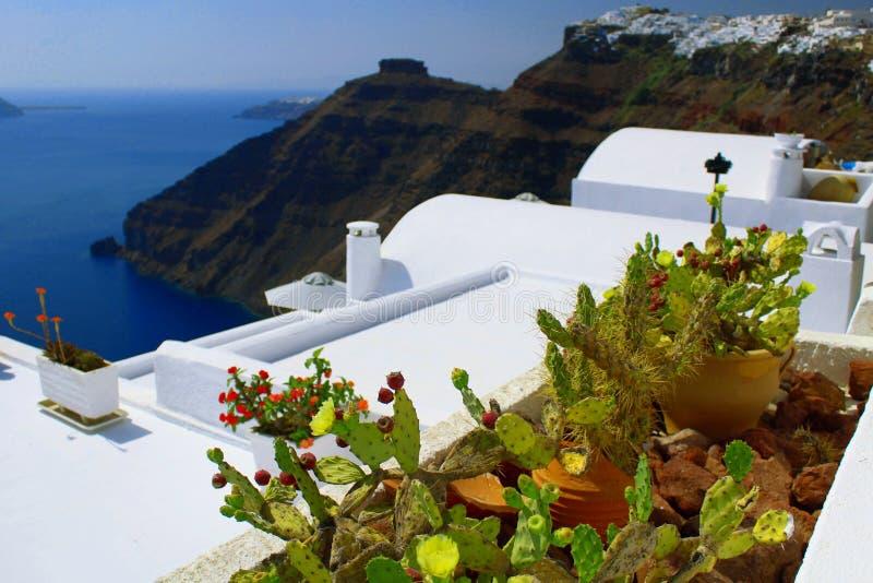 五颜六色的花瓶在使圣托里尼海岛惊奇的仙人掌在背景中 库存照片