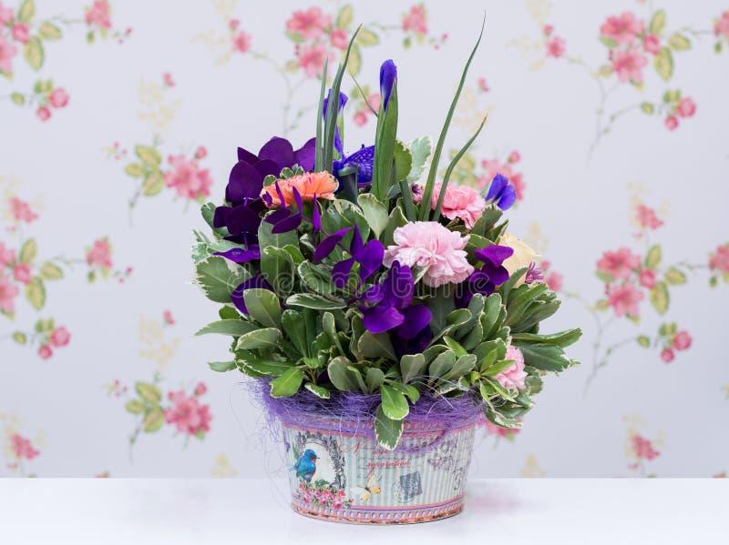五颜六色的花的布置 库存图片