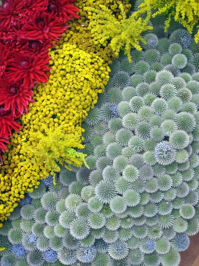 五颜六色的花纹花样 免版税库存照片