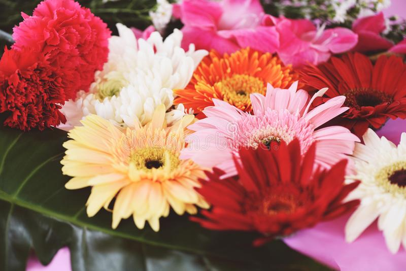 五颜六色的花背景-口气葡萄酒新鲜的春天花束大丁草菊花夏天植物和绿色热带叶子 免版税库存照片