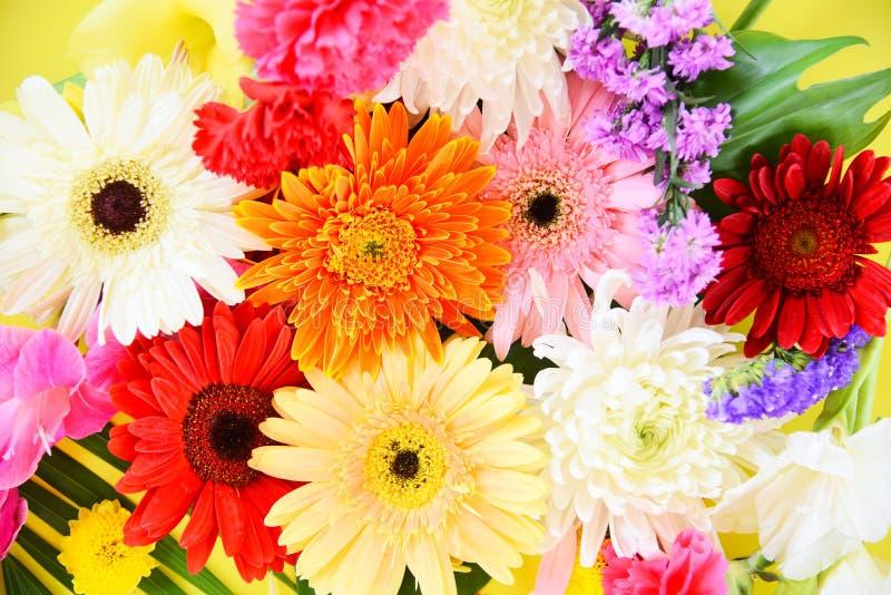 五颜六色的花背景-明亮和新鲜的春天花束大丁草菊花夏天植物和绿色热带叶子 图库摄影