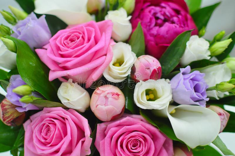 五颜六色的花花背景  库存图片