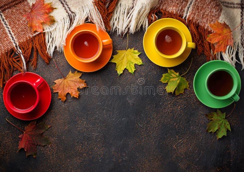 五颜六色的茶、格子花呢披肩和叶子 库存照片