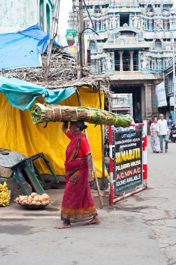 五颜六色的莎丽服运载的干草捆的印地安妇女在头 免版税库存照片