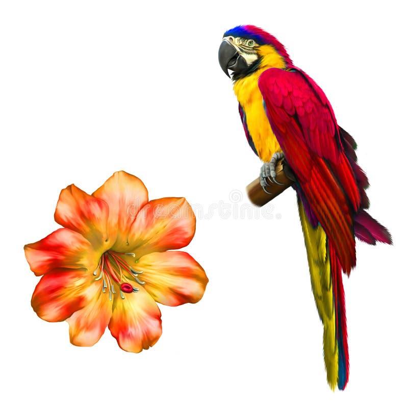 五颜六色的蓝色鹦鹉金刚鹦鹉,明亮的红色花 皇族释放例证