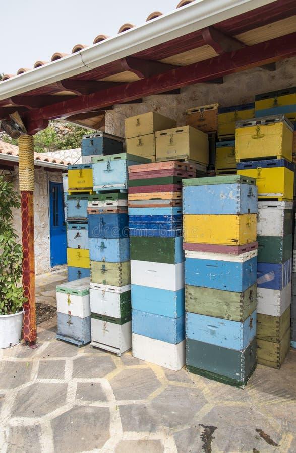 五颜六色的蜂箱 库存图片