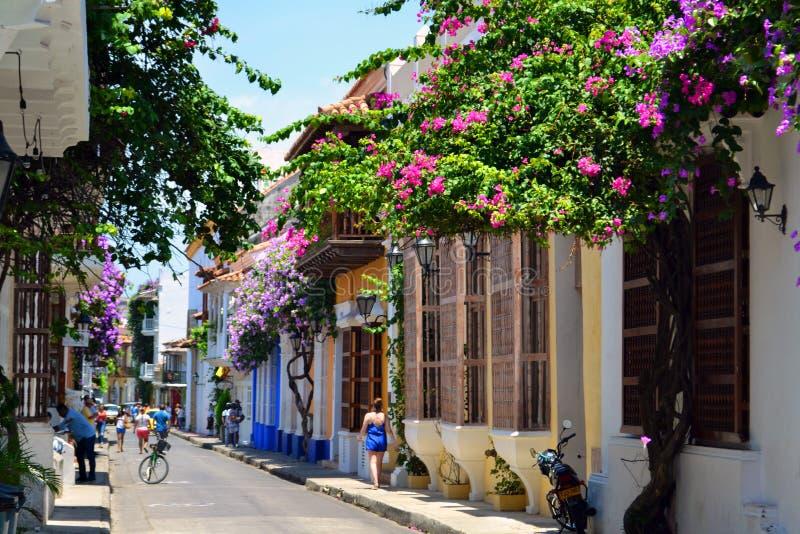 五颜六色的街道在卡塔赫钠哥伦比亚 库存图片