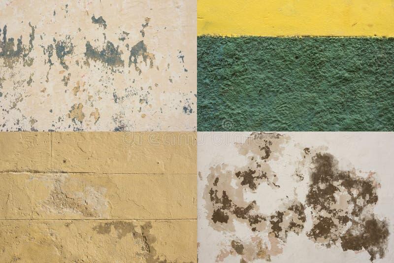 五颜六色的被佩带的墙壁哈瓦那#3 免版税库存图片