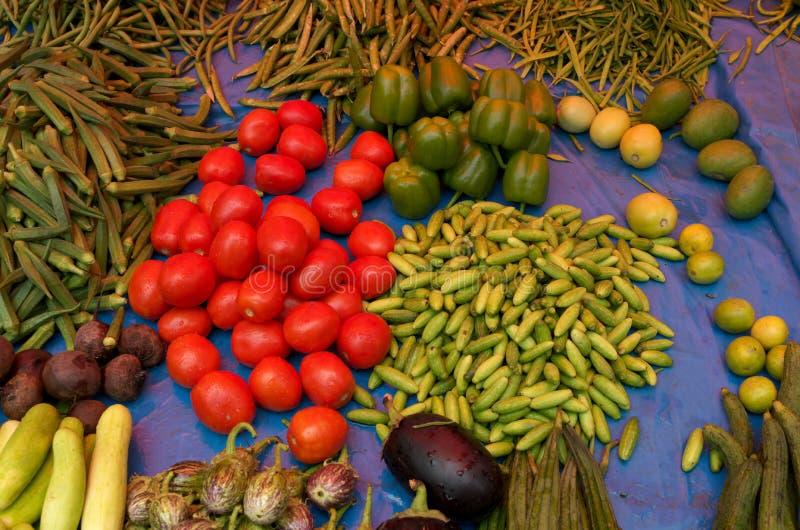 五颜六色的被分类的菜II 图库摄影
