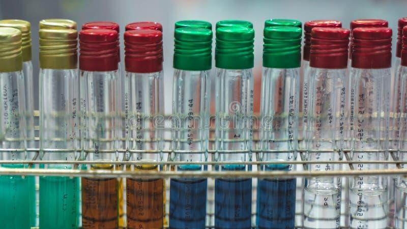 五颜六色的试管在科学实验室 免版税库存照片