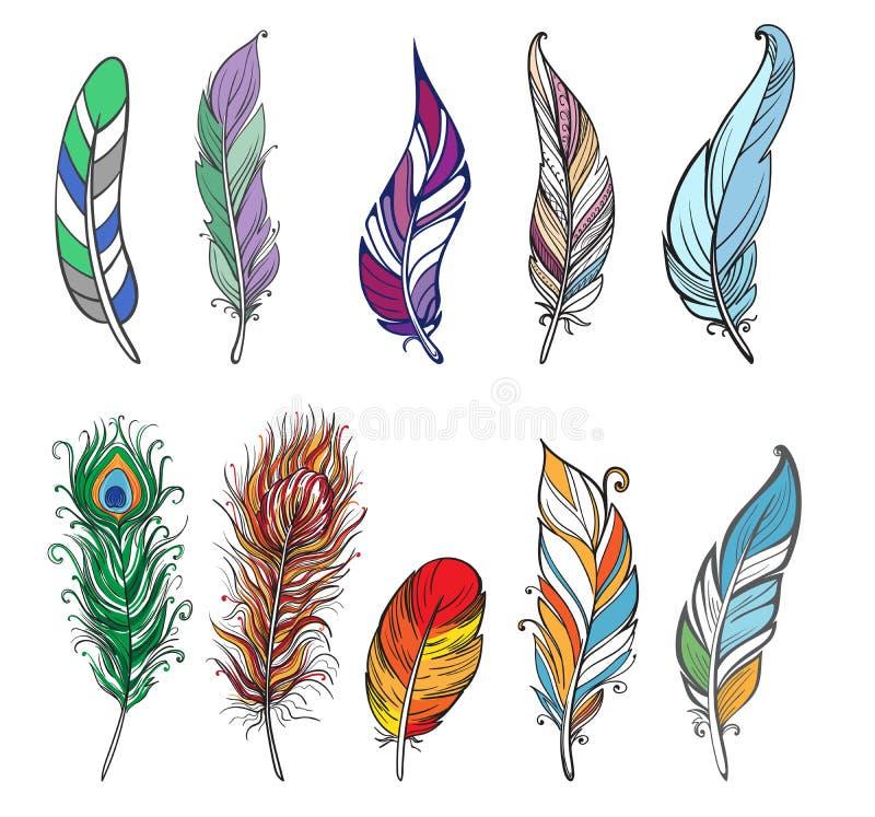 五颜六色的详细的鸟羽毛 库存例证
